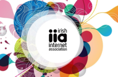 The Irish Internet Association's new head says it's 'too important to let die'
