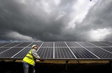 How much money Irish firms could make from solar - and where they can get it