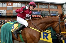 Yorkhill's stumble allows Michael O'Leary's Road To Respect claim Ryanair Gold Cup glory