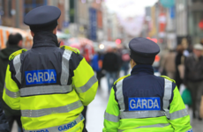 Garda's wrist broken in Dublin assault