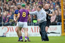 Wexford hero Storey admits Davy Fitz was 'totally wrong' but urges leniency from GAA chiefs