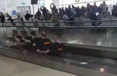 This video of an Antrim stag 'rowing' through Dublin Airport has been viewed nearly 8 million times