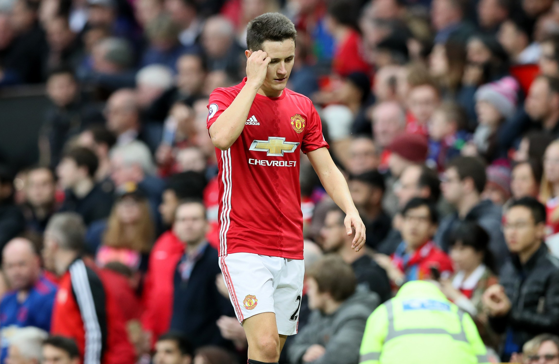 Ibrahimovic is privileged physically - Herrera