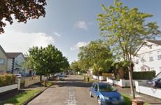 Gardaí appeal for witnesses after cars damaged in Castleknock