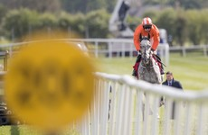 Shock Cheltenham winner Labaik refused to start another race today