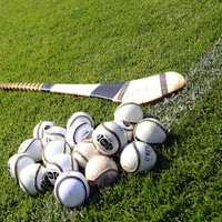 Wins for Laois and Wexford in Leinster MHC as they march on to semi-finals