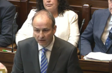 As it happened: Micheál Martin raises the death of Shane O'Farrell who was killed by a hit-and-run driver