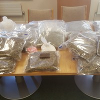 Gardaí find almost �300k worth of drugs at a home in Blanchardstown