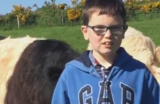 This 10-year-old boy decided to buy a cow with his communion money