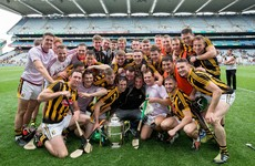 Poll: Who will win the 2017 Leinster senior hurling championship?