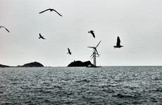 An Irish firm's €2bn offshore wind farm is clear to build after a major legal win