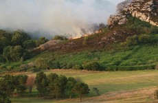 Farmers who started 'illegal' gorse fires may have their state subsidies docked