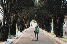 Ariana Grande was spotted wandering around Glasnevin Cemetery with her dog