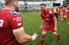 Brilliant Beirne, Erasmus' big question and more Pro12 final talking points