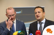 'Bitter, ugly, divisive politics. Team Coveney could have marched on without going so negative'