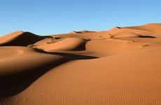 Over 40 people including women and infant children die of thirst in Sahara desert