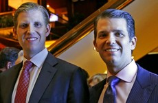 Donald Trump's sons launch hotel chain inspired by election campaign