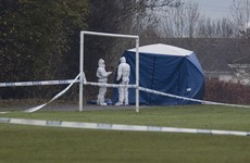 Armed gardaí arrest two men in investigation into murder of well-known criminal