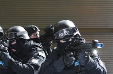 Gardaí have filled just a fraction of counter-terrorism roles they promised at the start of the year