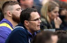 Ireland management in the dark over Rassie Erasmus' Munster future