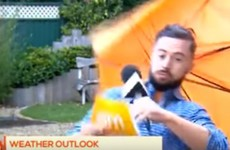 TV3's Deric Hartigan is going viral worldwide after being blown away on live telly last week