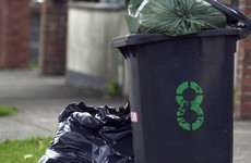 'Who is going to pick it up?': Donohoe hits back at those trying to block new bin charges scheme