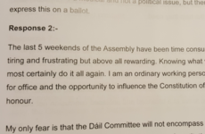 Citizens' Assembly - here's what individual members said about the Eighth Amendment