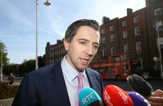 Minister for Health wants Eighth Amendment referendum next summer