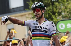 World champion Sagan disqualified from Tour de France for causing Cav' carnage