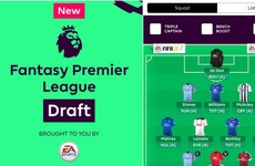 Fantasy Premier League confirms long-awaited 'draft' format for 2017/18 season