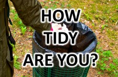 QUIZ: How Tidy Are You?