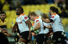 Cheetahs CEO all but confirms team's addition to PRO12 rugby