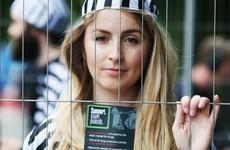 Poll: Do you think drug users should escape criminal conviction?