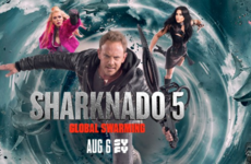 The 'Sharknado' phenomenon: making America bait again