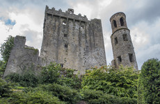 Locals are fighting a housing development near Blarney Castle that could 'spoil' tourism