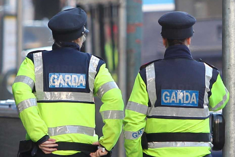 Nine gardaí are facing disciplinary action over their misuse of the PULSE system this year.