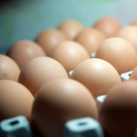 Thousands of contaminated eggs recalled in the UK - but no threat to Ireland yet