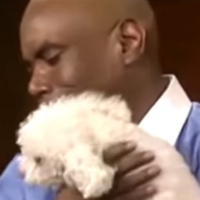 A video of Judge Judy letting a dog decide who his 'real' owner was during an ownership dispute has gone viral