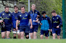 'Spanner in the works' of early South African trip still a problem for Leinster to work out