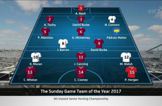 The Sunday Game pundits name their 2017 Hurling Team of the Year