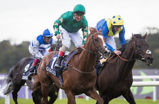 Decorated Knight causes major upset to take Champion stakes at Leopardstown