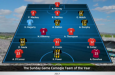 Do you agree with The Sunday Game's camogie Team of the Year?