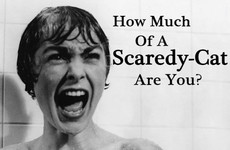 How Much Of A Scaredy Cat Are You?
