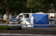 Two guns found by gardaí investigating west Dublin gangland killing