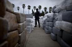 Huge marijuana haul in Mexico