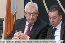 TD stops pilots from giving testimony after they raise problems with aviation regulator
