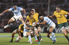 Australia overcome Pumas in hard-fought win to finish second in Rugby Championship