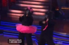 Bristol Palin's gorilla jive fails to impress (video)