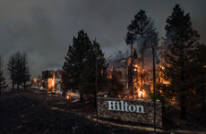 15 dead as wildfires torch California wine country