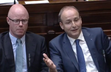 Talk of 'telepathic' borders and 'getting dogs ready' as Varadkar and Martin clash on Brexit